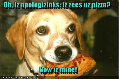 Cheezburger Image 4975015936