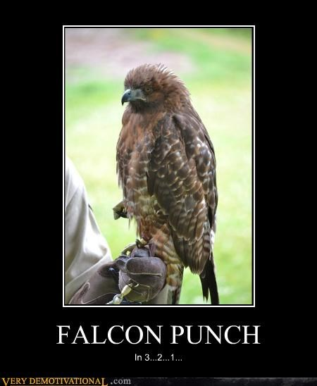 angry falcon punch