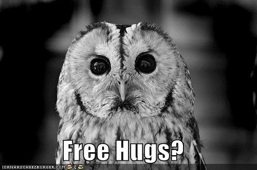 an-offer-you-cant-refuse Free Hugs im-down Owl - 4975566848