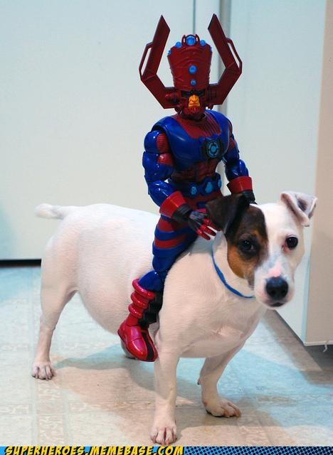 awesome dogs galactus Random Heroics toys wtf - 4975631360