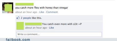 honey,funny,vinegar,flies