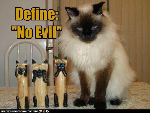caption captioned cat define evil himalayan no - 4976693760