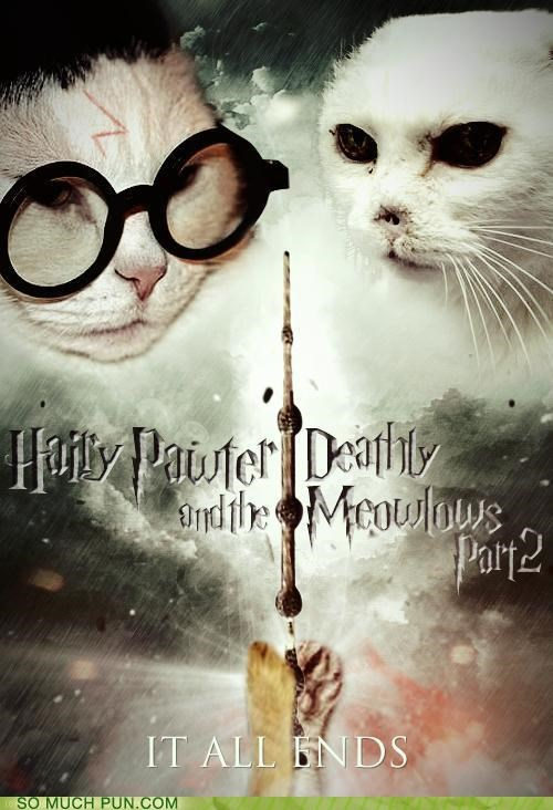 cat,conclusion,hairy,Harry Potter,harry potter and the deathly hallows,homophone,homophones,literalism,Movie,name,similar sounding,surname