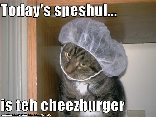 Cheezburger Image 4977204992