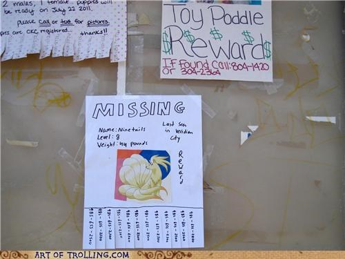 IRL,lost,lost dog,ninetails,Pokémon,poodle,poster,sign