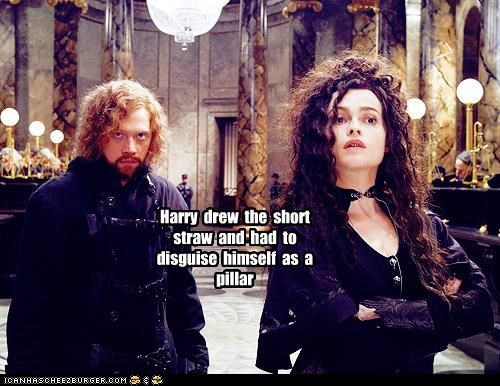funny Harry Potter helena bonham-carter Movie rupert grint sci fi - 4978122752