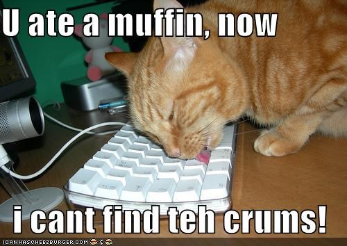 U ate a muffin, now  i cant find teh crums!