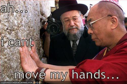 Dalai Lama political pictures - 4982421248