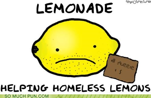 aid,double meaning,homophone,lemon,lemonade,literalism