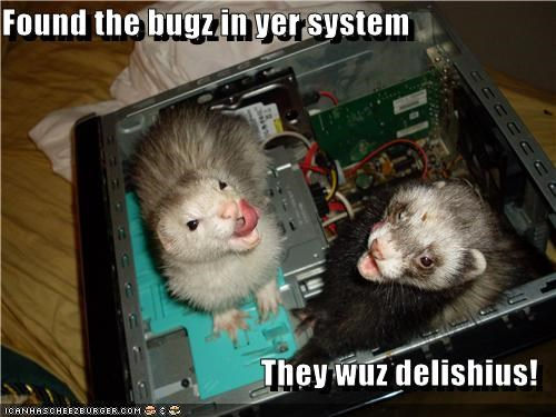 Found the bugz in yer system  They wuz delishius!