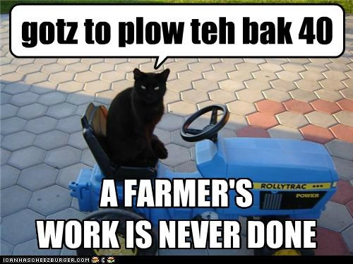 gotz to plow teh bak 40 A FARMER'S WORK IS NEVER DONE