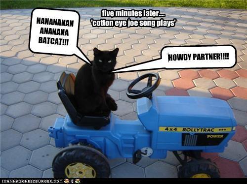 NANANANANANANANA BATCAT!!! Cleverness Here five minutes later.... 'cotton eye joe song plays' HOWDY PARTNER!!!!
