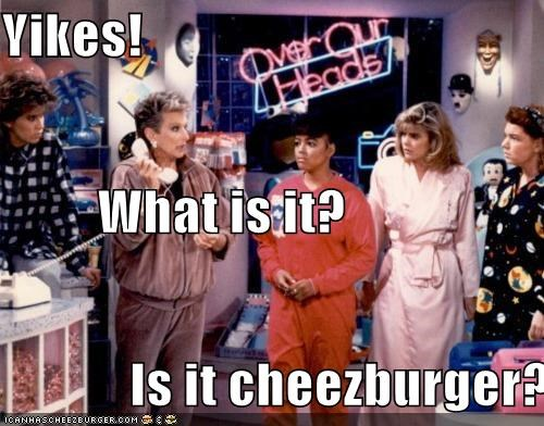 Cheezburger Image 4983368960