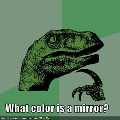 black,color,glass,mirror,philosoraptor,racism,white