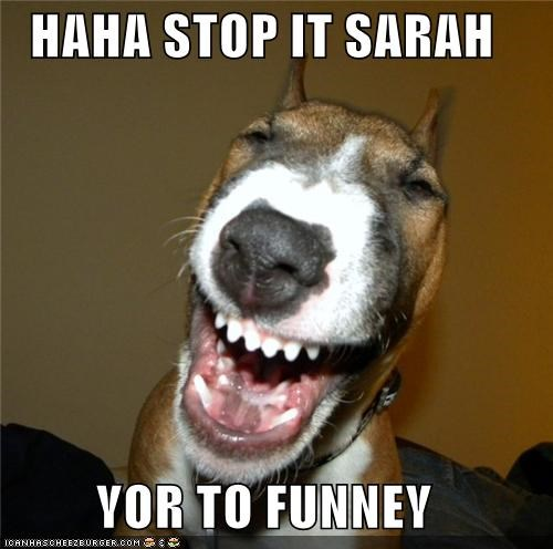 haha stop it sarah yor to funney i has a hotdog dog pictures
