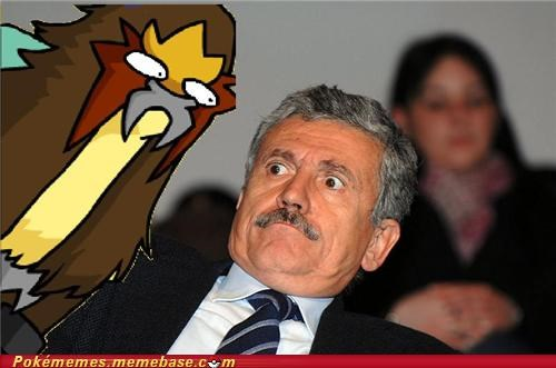 entei,flee,IRL,surprise