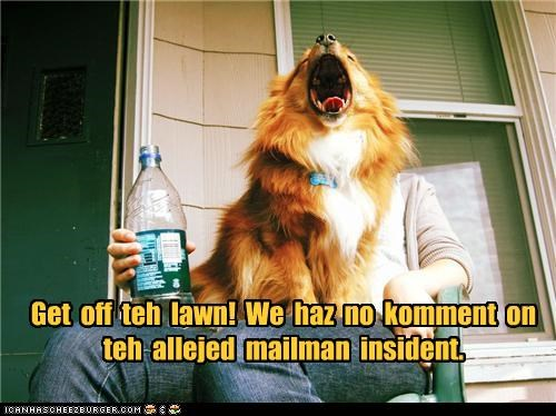 best of the week corgi get off the lawn mailman mixed breed no comment pomeranian porch talking