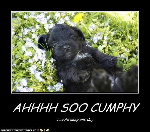 AHHHH SOO CUMPHY i could seep alls day