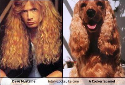 classics dave mustaine dogs guitarist megadeath musician - 4986765824