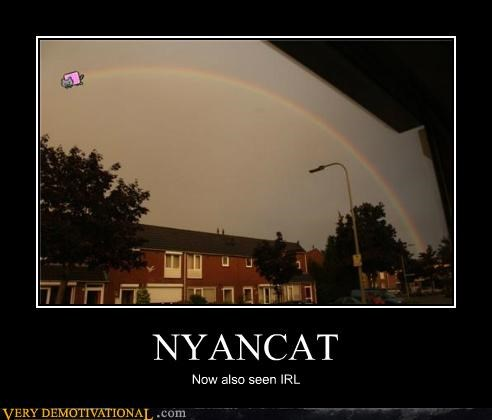 IRL,nyancat,Pure Awesome,rainbow,wtf