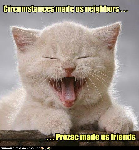 best of the week caption captioned cat cause circumstances effect friends Hall of Fame kitten neighbors prozac - 4986983168