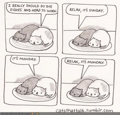 best of the week,comic,comics,lazy,monday,mondays,relax,sunday