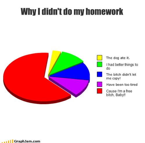 excuses,homework,lady gaga,Pie Chart