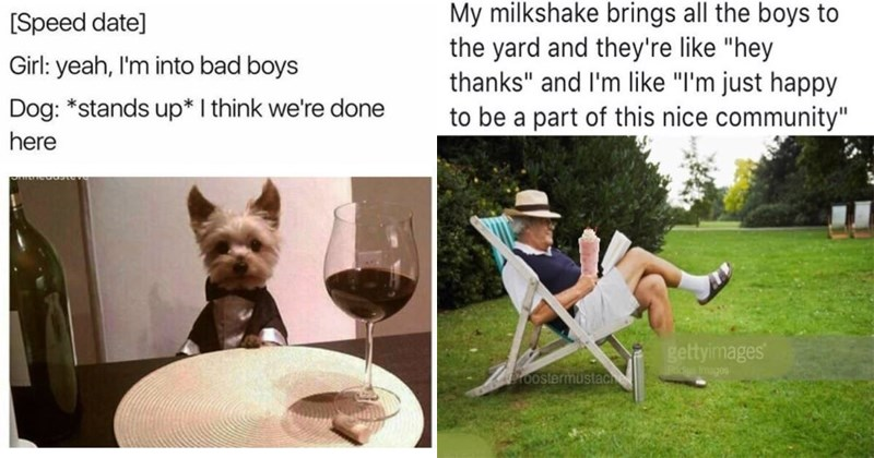 Wholesome memes about love, family, animals, dogs, cats, friendship, friends.