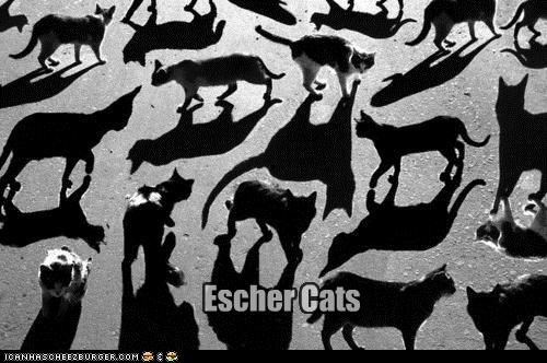 art,caption,captioned,cat,Cats,confusing,escher,m-c-escher,shadow,shadows,trippy