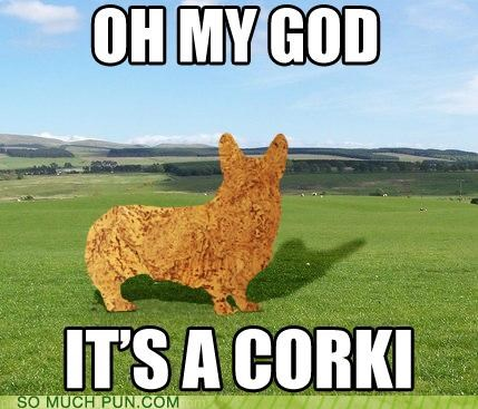 corgi cork dogs Hall of Fame literalism - 4988346624