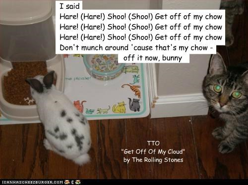 """I said Hare! (Hare!) Shoo! (Shoo!) Get off of my chow Hare! (Hare!) Shoo! (Shoo!) Get off of my chow Hare! (Hare!) Shoo! (Shoo!) Get off of my chow Don't munch around 'cause that's my chow - off it now, bunny ggg ggggggggggggggggggg ggggggggggggggggggg ggggggggggggggggggg ggggggggggggggggggg gggggggggggggggggg gggggggg TTO """"Get Off Of My Cloud"""" by The Rolling Stones"""