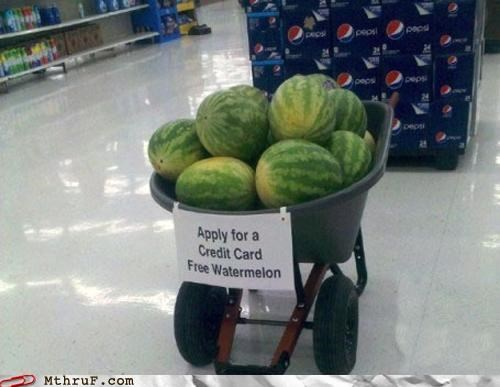 credit credit cards racist watermelons - 4990695168