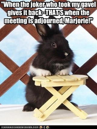 adjourned bunny caption captioned gavel joker meeting prank stealing stolen thief time when - 4990916864