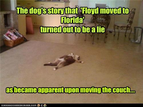 caption captioned cat couch dogs evidence lie moving murder plot story - 4991219712