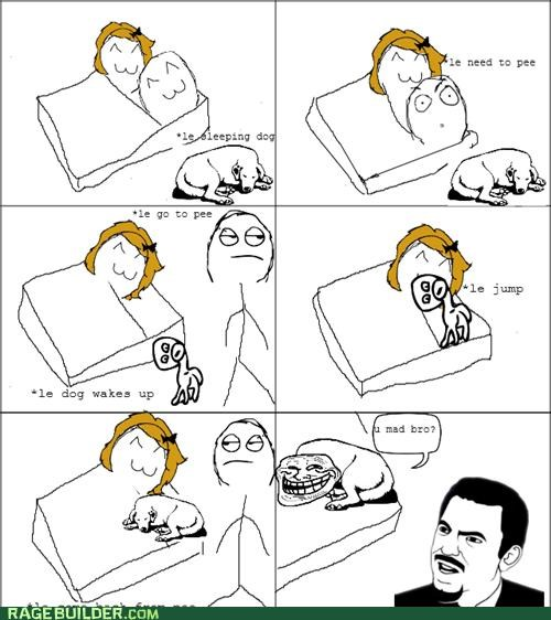 dogs,Rage Comics,sleeping,troll face