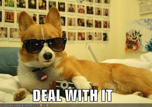 corgi Deal With It dogs douche Photo - 4992368128