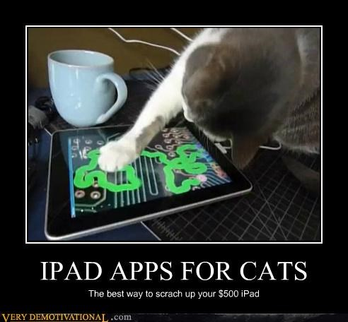 apps,bad idea,Cats,hilarious,ipad