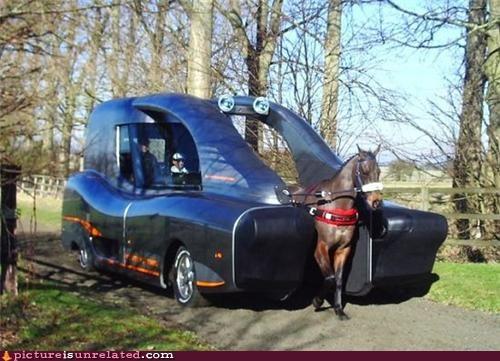 carriage future horse wtf - 4993418496