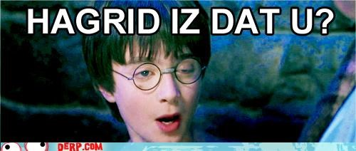 Celebriderp,glasses,Hagrid,Harry Potter
