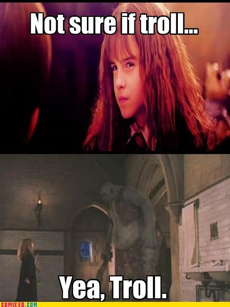 Harry Potter hermione not sure if trolling troll - 4994575872