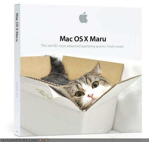 apple,best of the week,computers,i want it to be real,mac,maru,operating system,photoshopped