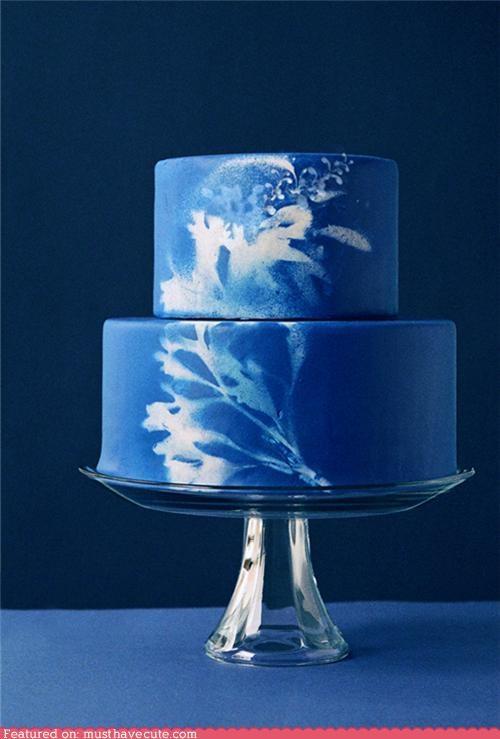 airbrush blue cake epicute plant sunprint - 4994953728