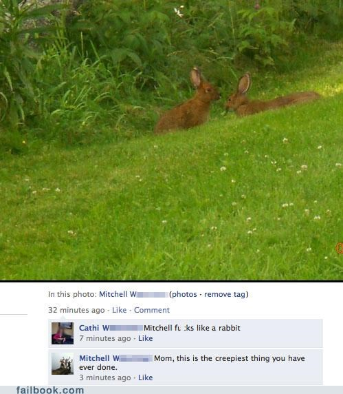 creepy parents Photo rabbits wtf