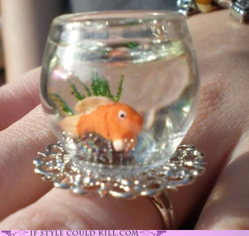 cool accessories,goldfish,ring of the day,rings