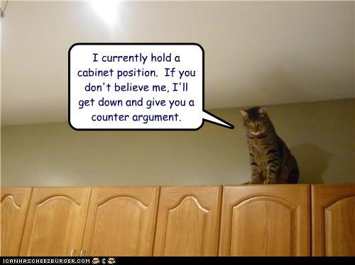 arguments cabinet cabinets caption captioned cat Cats counter puns up high - 4995715840