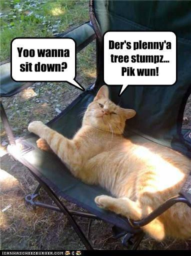 Yoo wanna sit down? Der's plenny'a tree stumpz... Pik wun!