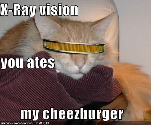 Cheezburger Image 4996632320