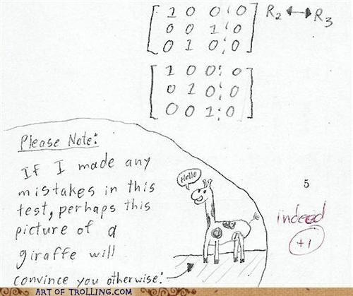 awesome drawing giraffes test win - 4997085952