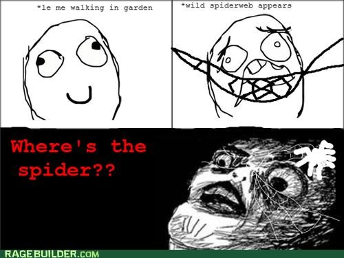 garden,Rage Comics,spider,spiderweb,where is it