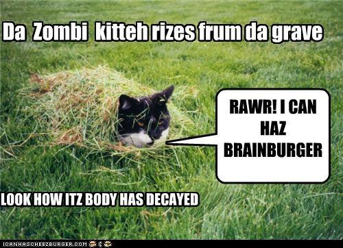 Da Zombi kitteh rizes frum da grave RAWR! I CAN HAZ BRAINBURGER NOMS? LOOK HOW ITZ BODY HAS DECAYED